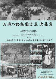 夏の企画展「進め!高知市立動物園~お城の動物園から67年~」