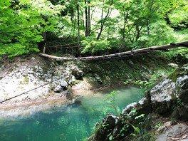 2泊3日おやこ夏キャンプ「山形県鶴岡市の秘境であそぼう」~自然と食を満喫~
