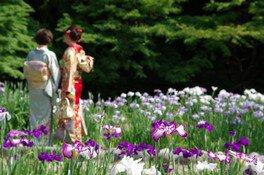 雨を聴く 徳川園の和傘