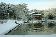 松を寿く 徳川園のお正月