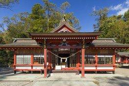蒲生八幡神社六月灯