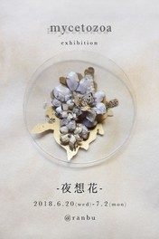 mycetozoa個展「夜想花」