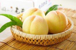桃ジュースが出る蛇口 at 岡山後楽園
