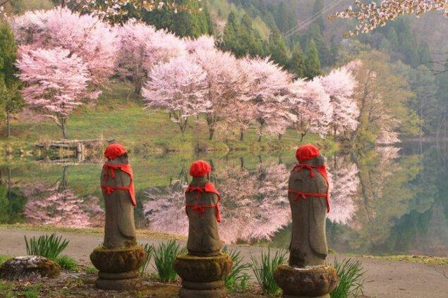 黄金の鐘伝説の中綱湖、ボヤージャーカヌーで夜桜鑑賞と星空(曇りの場合「夜」)の湖面散歩