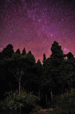 星好きスタッフと観る☆なべくらが誇る満天の星空