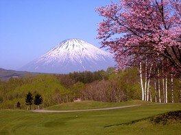 【桜・見ごろ】ルスツリゾートゴルフ72