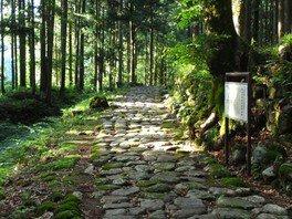 まほろば史跡見学会(8月)
