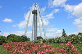 138タワーパーク ローズフェスタ