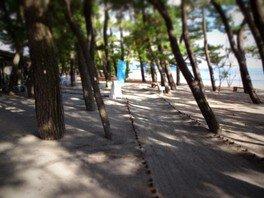 【海水浴】重富海水浴場