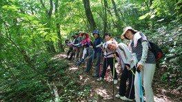 三瓶山プログラム(7月)