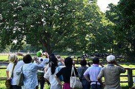 小岩井農場で思いっきり夏休み!