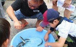 鮎の生態講座と漁協見学