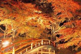 伊香保温泉湯元「河鹿橋」の紅葉
