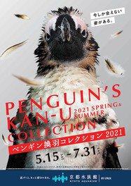 ペンギン換羽(かんう)コレクション2021