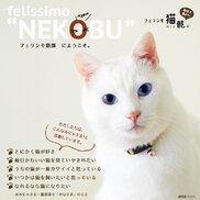 フェリシモ猫部 in TOKYO Me+