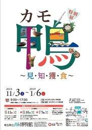 平成30年度特別展「カモ・鴨~知・見・獲・食~」