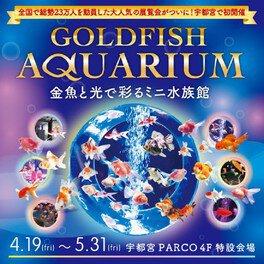~金魚と光で彩るミニ水族館~ GOLDFISH AQUARIUM