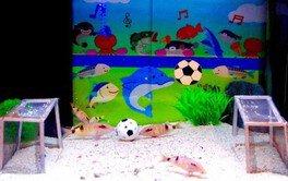 おさかなギョリンピック〜水の中のスポーツ大会〜