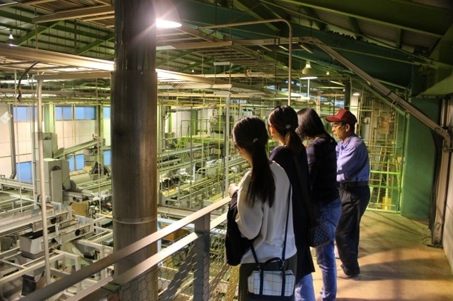 静岡・足久保ティーワークスで夜の茶工場見学&夜cafe特別編<中止となりました>