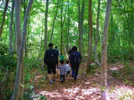 楽しく散策 ブナの森で植物ビンゴ
