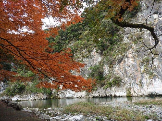 立神峡の紅葉