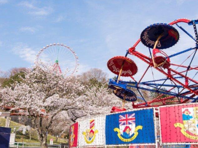 【桜・見ごろ】さがみ湖リゾート プレジャーフォレスト<中止となりました>