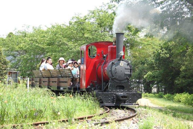 本物のSL(蒸気機関車)運行(5月)<中止となりました>