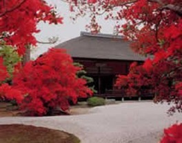 曼殊院門跡の紅葉
