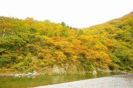 荒れた岩肌を紅葉が彩る壮観な景色