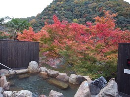 武田尾温泉の紅葉