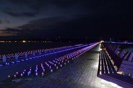 西能登里浜イルミネーション ときめき桜貝廊