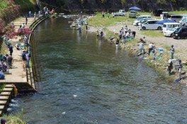三ケ所川釣り大会
