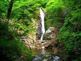 摩耶山山開き(越沢口、関川口) 春の登山会