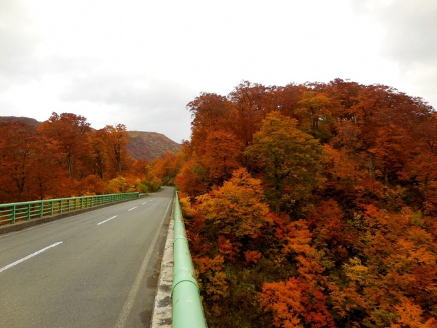 胆沢川渓谷の紅葉