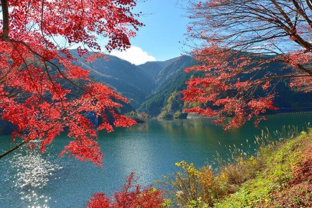 名栗湖 有間渓谷の紅葉