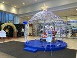 Wonderland Christmas ワンダーランドクリスマス