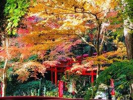目の霊山 油山寺の紅葉