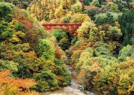 【紅葉・見ごろ】松川渓谷