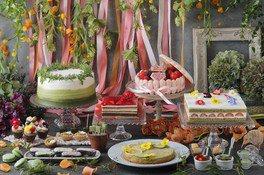 MATCHA Sweet Garden 2019 ~Flower Collection~