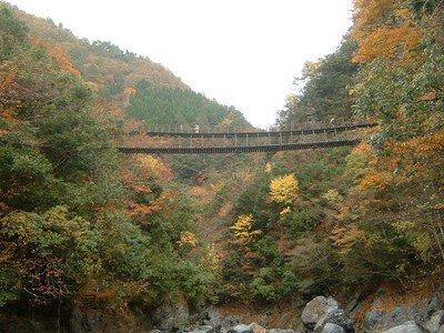 五家荘(樅木の吊橋)の紅葉