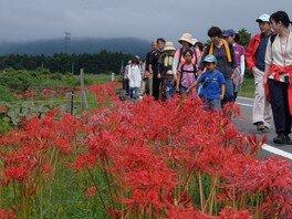 第4回 粕川町棚田の彼岸花とサンデンの森ウォーキング
