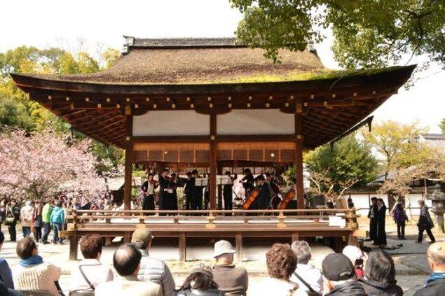 平野神社桜コンサート