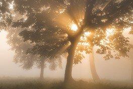 詩季の会写真展「詩季光響」