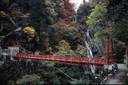 【紅葉・見ごろ】三滝渓