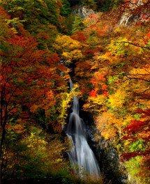 小中大滝(こなかおおたき)の紅葉