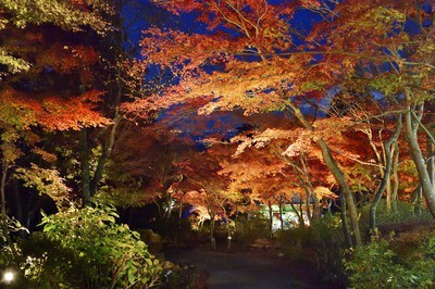 筑波山の紅葉