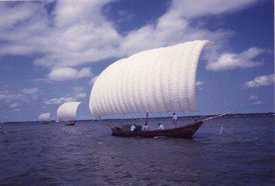 観光帆引き船操業2019