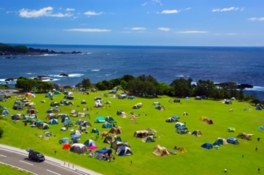 潮岬望楼の芝デイキャンプ場