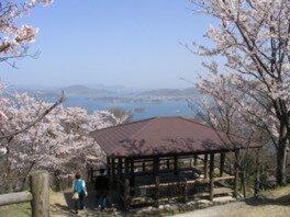 筆影山山頂展望台の桜