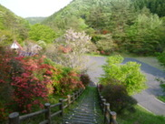 刈生沢の滝渓流公園